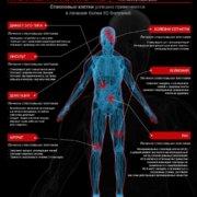 инфографика стволовые клетки